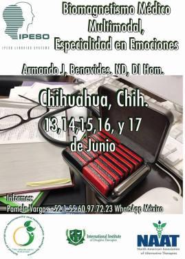 Chihuahua BMM.jpg